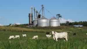 Personalvermittlung landwirtschaftliche Mitarbeiter